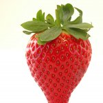 Strawberries Calinda