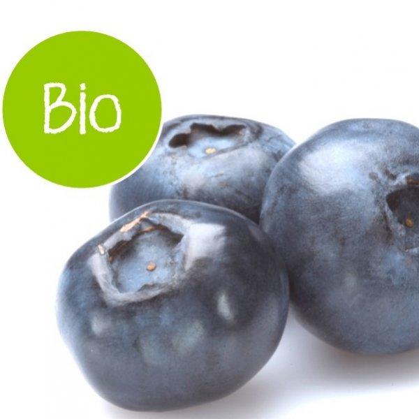 Blueberries organic