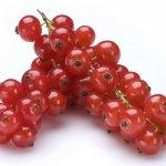 Grosellas rojas