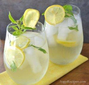 gember & citroen ice tea