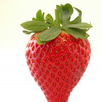Aardbeien Calinda